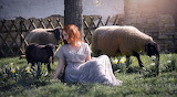 Girl, sheep, spring, tree, nature, woman, animal