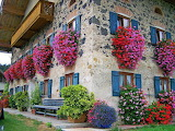 flowered house