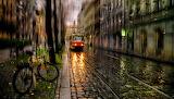 Urban street in the rain