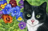 Tuxedo Cat and Colorful Pansies by Irina Garmaschova