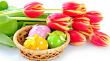 #Tulips and Easter Eggs