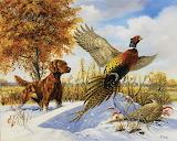 Irish Setter & Pheasants~ LindaPicken