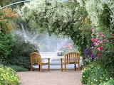 GardenNew330750