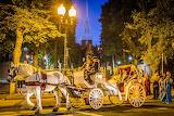 Horsedrawn Carriage Wedding at Boston's North End Prado