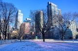 Canada,Toronto Snow