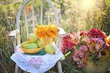 Still-life-flowers-bouquet-chair-pears-fruit