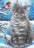 Gray Tabby Cat and Robin in Winter