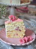 Vanilla pomegranate cake