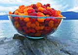 Salmonberries in the Bowl