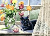 Cat Window Sitting