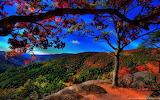 The best autumn scenery