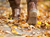 Best autumn walks