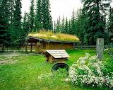 somewhere in Alaska