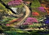 #Beautiful Garden