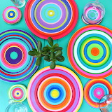Colorful summer dishes