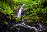 Nuuli-falls-american-samoa-20120128_4840
