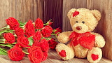 Roses Teddy bear Wood planks Red