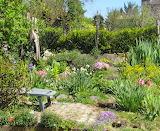 a place in the sun (gardener's bonus)