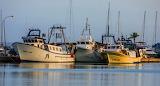 Chalutiers au port d'Alcudia (Loul)