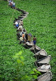 floating boat bridge, bangladesh