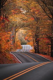 Autumn road tour