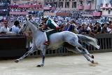 Siena Contrada Oca vince Palio 2.7.2013 Tittia su cavallo Guess