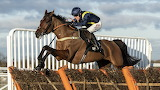 Fiddlerontheroof and Robbie Power 2020 Tolworth Hurdle
