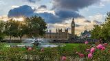 St Thomas gardens