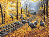 Turkeys and Train