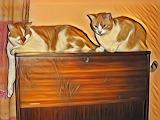 Caturday Art DDG