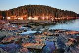 Seal-cove- Maine