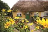 ^ Adare, Co. Limerick Ireland - © Tourism Ireland