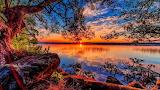 /Potw/ Beauty of nature.