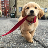 I'll hold the lead