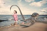 Teve Reid, photography