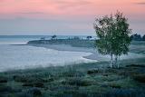 Landscape, Malören Sweden