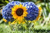 ☺ Pretty flowers...