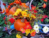 Decor for Fall...