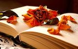 Lectura y recuerdos