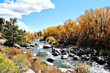 Fall Colors Surround the Arkansas River Buena Vista Colorado USA