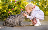 Cat, cat, joy, mood, the situation, kiss, girl, friends