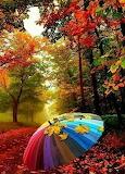 Umbrella all alone