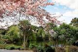 Botanic Gardens Auckland NZ
