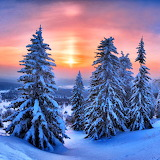 *Beautiful Winter...