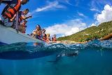 tourists on canoe and shark below