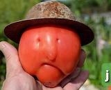 Food - Tomato Face