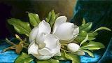 Magnolias on Blue Velvet