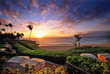 Hawaii, Where My Mother Was Born