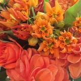 ^ Beautiful bouquet