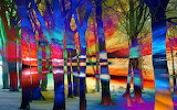 Trees-at-sunset-abstract-landscape-mary-clanahan